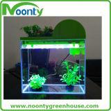 Serbatoio di pesci chiaro di Aquaponics della vetroresina dell'acquario del contatore della barra del calendario perpetuo di Multi-Funzioni LED