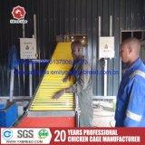 De Kooi van de Kip van de laag van de Leveranciers van de Apparatuur van het Gevogelte in Zuid-Afrika
