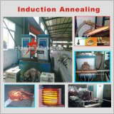 Прутковый автомат провода отжига топления индукции и все металлы видов