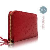 Disegni recentemente vari del raccoglitore/borsa di tendenze di colori per gli accessori delle donne