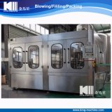 Machine remplissante de mise en bouteilles de matériel de l'eau de fournisseur d'usine avec le prix bas