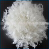 La piuma professionale dei prodotti dell'assestamento del commercio all'ingrosso della fabbrica della Cina giù attenua/cuscini
