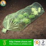 La piccola serra ecologica del film di materia plastica coltiva il traforo per fare il giardinaggio