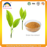 Extrait de thé vert pour perte de poids