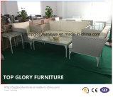 Mobília ajustada do jardim do Rattan do PE do sofá de alumínio o mais atrasado do frame (TG-8014)