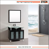 Cabina de cuarto de baño de la tapa del vidrio Tempered T9148-48e