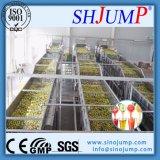 Linha completa de processamento de suco de frutas