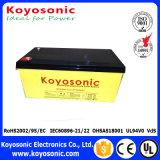Batterij voor Batterij van de Batterij van het Gel van de Zonne-energie de Zonne Krachtigste Zonne 12V