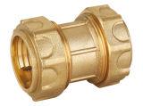 PEの管(軽いタイプ)のための真鍮の圧縮の付属品