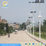 Eléctrico Tipo 30W-60W LED Wind Solar Hybrid Street Lighting