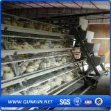 Gabbia calda dell'azienda agricola di pollo di vendita
