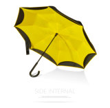 Transfer Because Umbrella