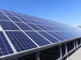 Ebst-M260 vend le panneau solaire mono des cellules 260W de haute performance