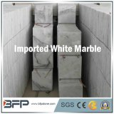 Pietra di marmo bianca inclusa per le mattonelle di pavimentazione in Camera/hotel/costruzioni commerciali