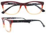 2016 Frames Optische Eyewear van de Oogglazen van de Manier de Populaire