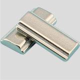 Magneet van het Neodymium NdFeB van de douane de Onregelmatige van Concurrerende Prijs