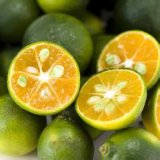 Poeder van het Fruit van de Kalk van Prue van Nicepal het Natuurlijke
