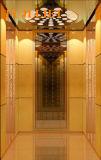 320kg 의 400kg 실내 가정 엘리베이터