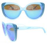 De Kleurrijke Acetaat Gepolariseerde Zonnebril van nieuwe Producten