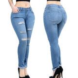Les femmes de modèle de mode ont déchiré les jeans maigres de denim