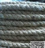 3-Strand Seil (Nylon / PP / PE / Polyester / Manila)
