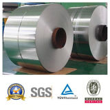 Roestvrij staal Metal Coil (304/310S/321/3216/316L/904L)