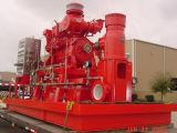 FM anerkannte vertikale Turbine-Feuer-Pumpe