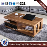 Tavolino da salotto di piccola dimensione del salone (HX-6M339)