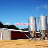 Matériel automatique personnalisé de ferme avicole pour la ligne alimentante de poulet à rôtir