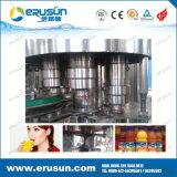 Botellas de PET zumo de fruta de llenado en caliente de la máquina