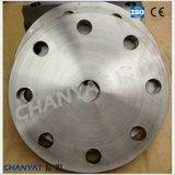 Flange cega de aço inoxidável (F316Ti, F317L, F309H)