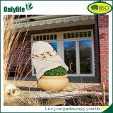 Теплое Onlylife Pop-up Worth крышка завода для предохранения от заморозка