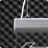 Indicatore luminoso Emergency del LED Eixt con la lettera di arabo dell'uscita