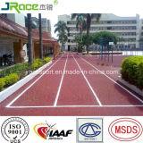 De Belangrijke Fabrikant van Guangzhou van het Aanstoten van Spoor voor Park