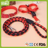 De Heldere Kleuren van uitstekende kwaliteit voor de Hond Leashes&Collar&Harness van het Huisdier (hn-CL638)