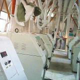 Molino harinero o trigo/maíz/maíz comerciales (6FTF-500)