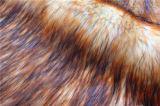 Tissu élevé chaud de fourrure artificielle de pile pour le vêtement/jouet