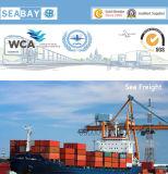 Taxas baratas e de confiança do transporte do mar de Guangzhou a Bremerhaven