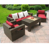 Rattan Outdoor Coffee Set Dining Furniture (DS-06009)
