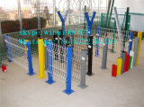 PVC에 의하여 용접되는 철망사 담의 중국 공급자