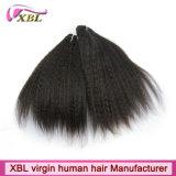 ねじれたまっすぐなインドの毛の卸売の人間の毛髪の拡張