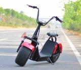Motocicleta eléctrica de la rueda del tipo dos de la batería de Li del freno de disco del modelo nuevo para los adultos