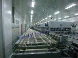 Módulo solar Línea de producción (240MW llave en mano)