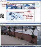 De draadloze Camera van het Web van de Schuine stand van WiFi Megapixel IP van het Netwerk Mini Pan