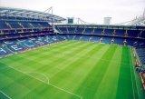 Het Kunstmatige Gras van de voetbal voor het Hof van de Voetbal