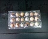 Bandejas de ovo de codorna de plástico de 18 buracos com 40um Clear Pet