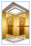 De Lift van het Huis van de passagier met Spiegel Geëtstn Roestvrij staal