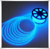 Color azul de la tira caliente de la venta 5050 LED para la decoración casera