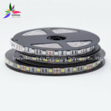 Hohes Brightness Blue Color IP20 SMD5050 Chip 60LEDs 14.4W DC12V LED Strip