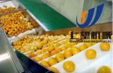 Schlüsselfertiger Orangensaft-Produktionszweig, Maschinerie für Verkauf herstellend